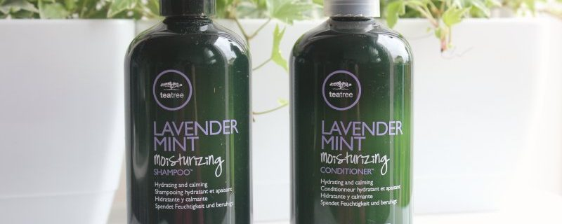 House of Hair Tea Tree lavender mint fra Paul Mitchell
